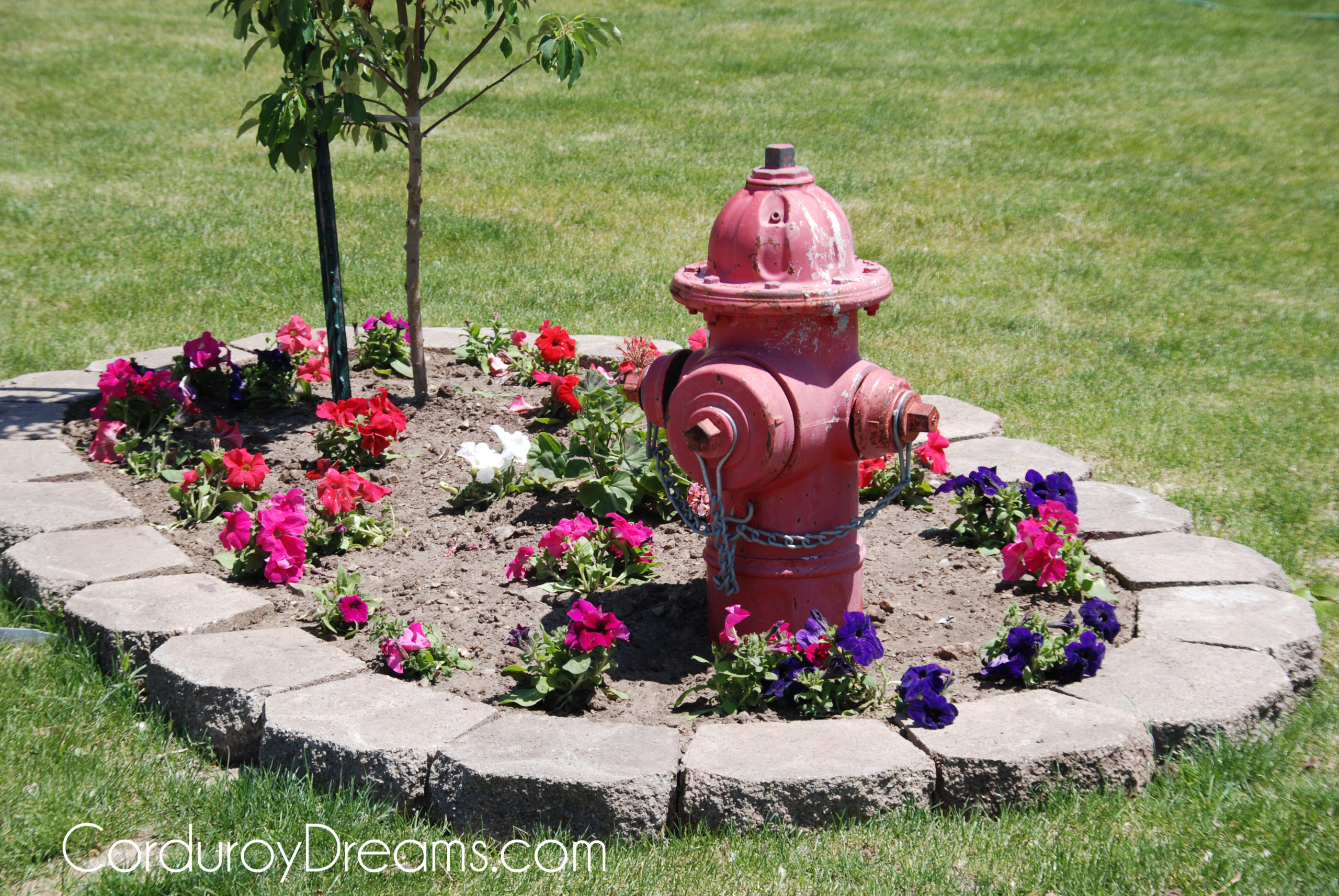 Fire Hydrant Flower Bed