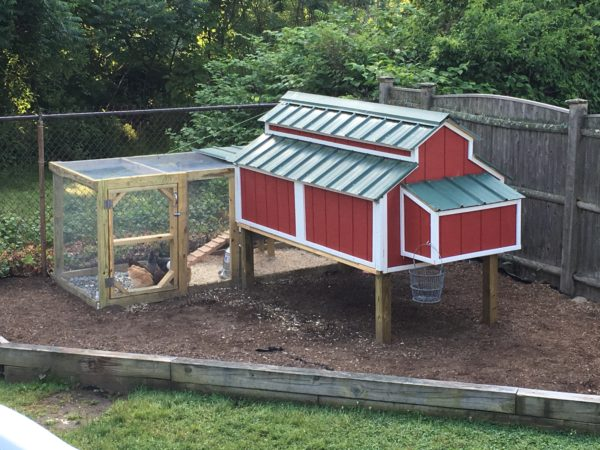 Free Chicken Coop Plans - The Creative Mom