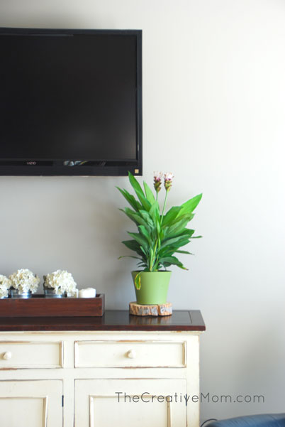 Using Plants to Decorate Indoors
