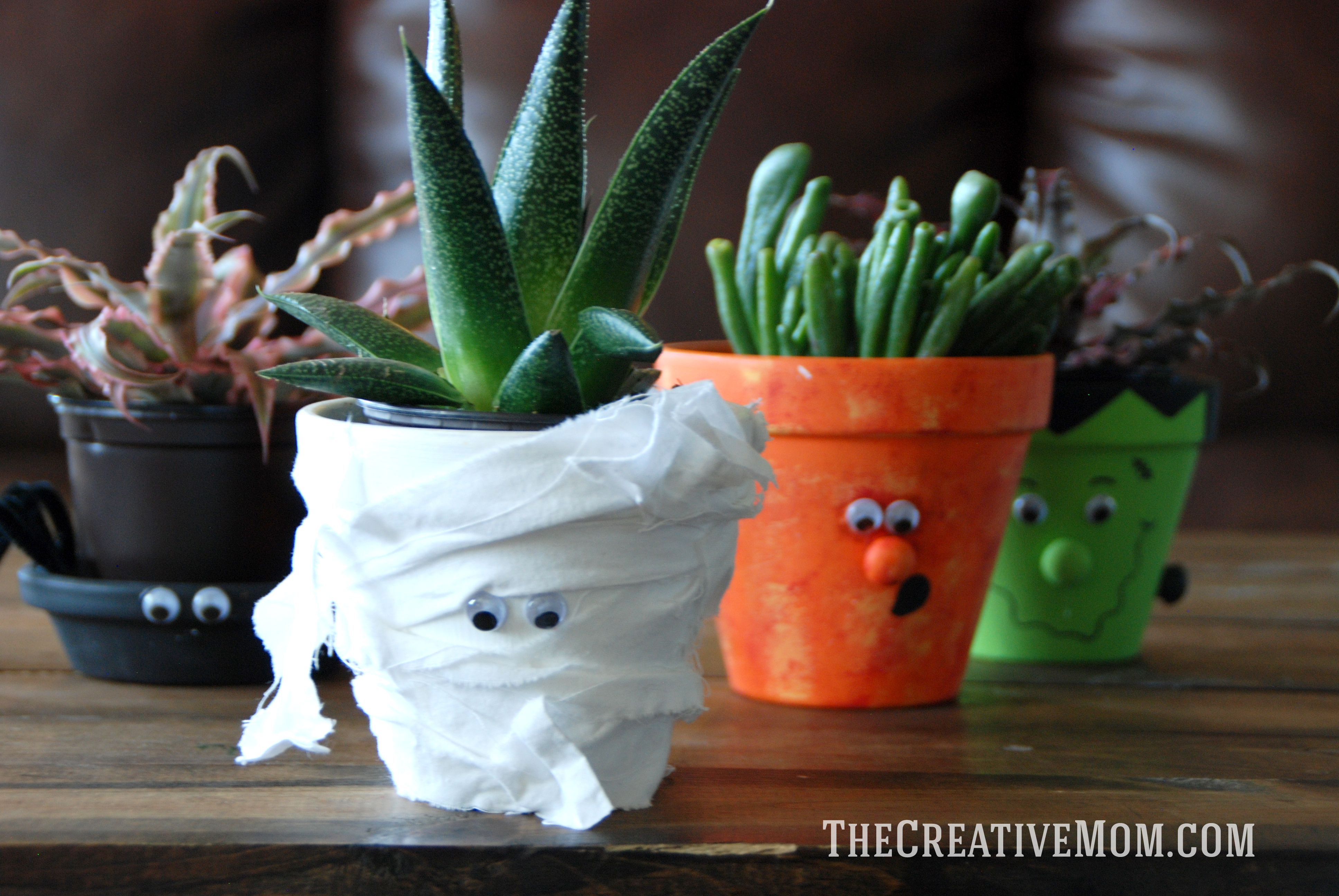 Spooky Potted Plants for Halloween
