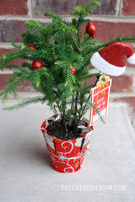 Creative christmas tree ideas give gift