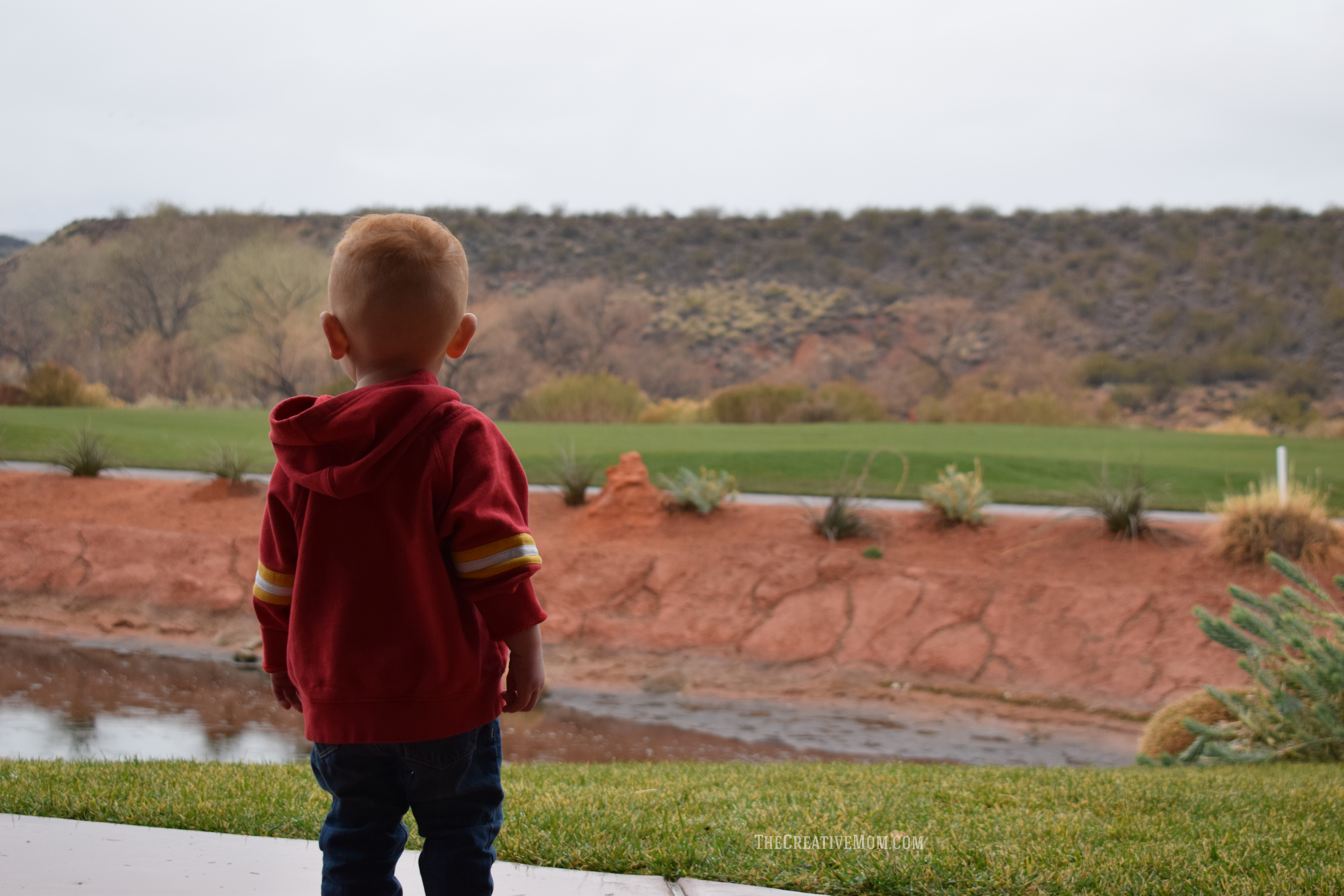 The Best Family Friendly Resort in St George